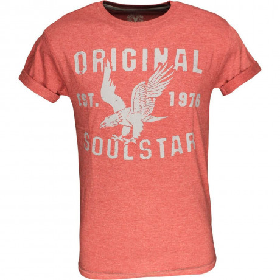 Soul Star Eagle Print T-shirt Red Melange Image