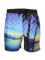 Soul Star Swim Beach Shorts Tropical Sea Surf Print